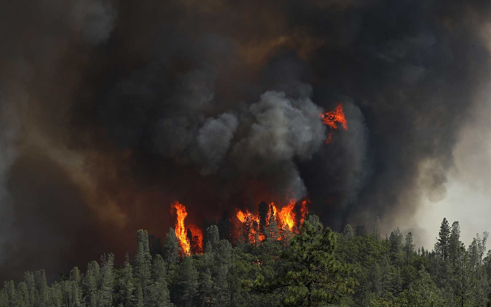 Massive Wildfire Spreads To 80,000 Acres, Scorches Homes Near Redding, CA