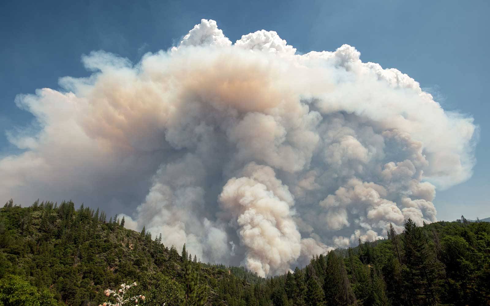 A large pyrocumulus cloud (or cloud of fire) explodes outward during the Carr fire near Redding, California on July 27, 2018.