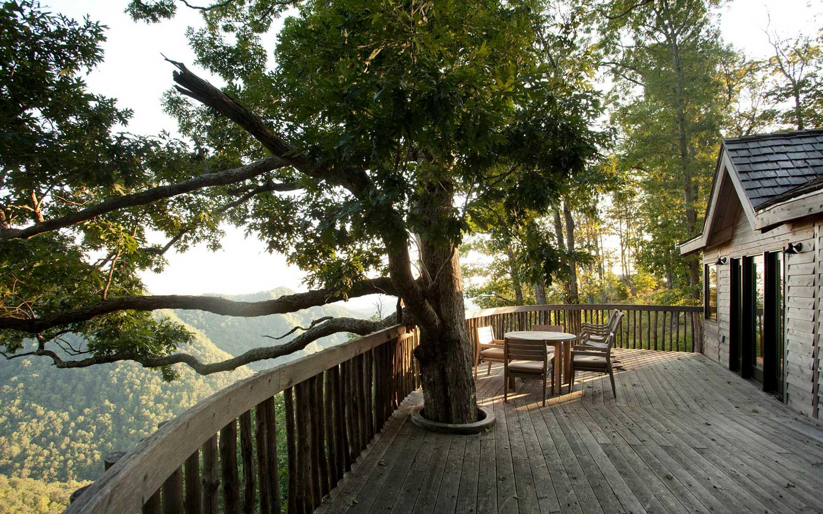 The Tree Houses at Primland, Virginia