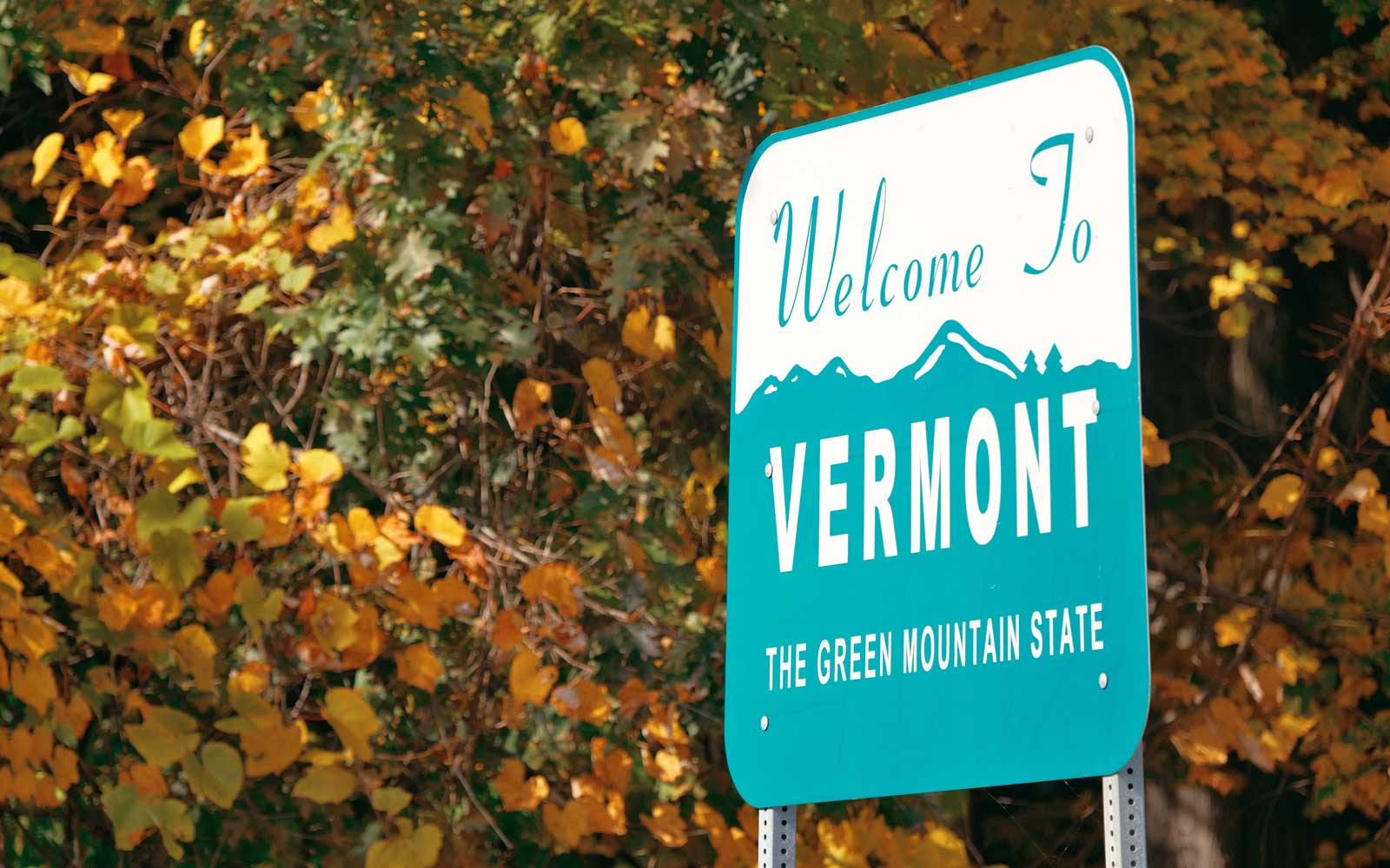 State Welcome Signs