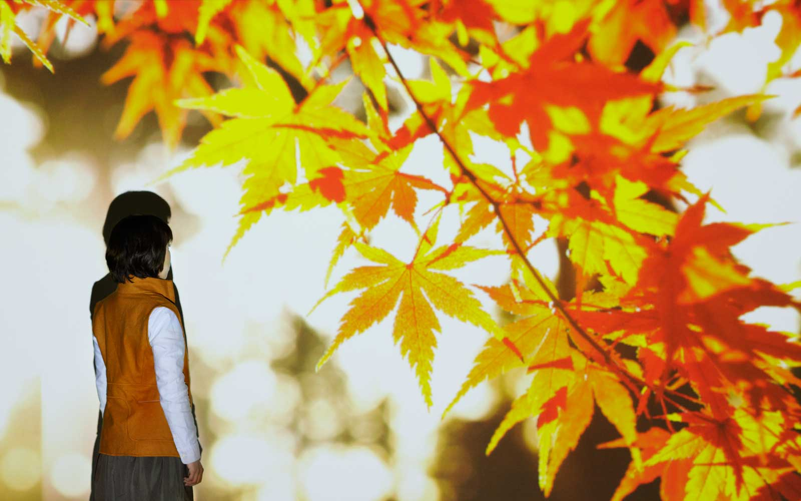 For Couples: Autumn Foliage and a Leaf-peeper