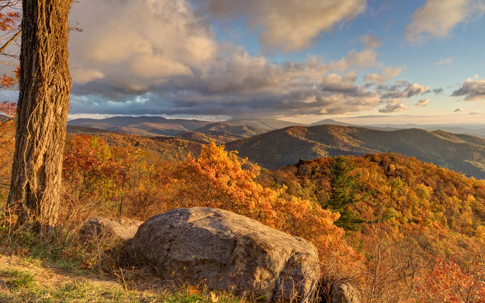 Peak fall colors at Hazel Mountain overlook along Skyline Drive, Shenandoah, Skyline Drive
