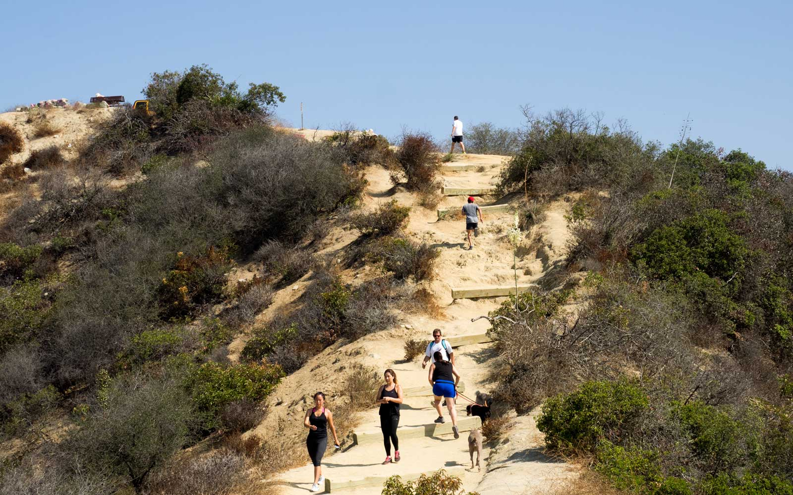 A view of the re-opening of Runyon Canyon in Hollywood. on August 02, 2016 in Los Angeles, California.