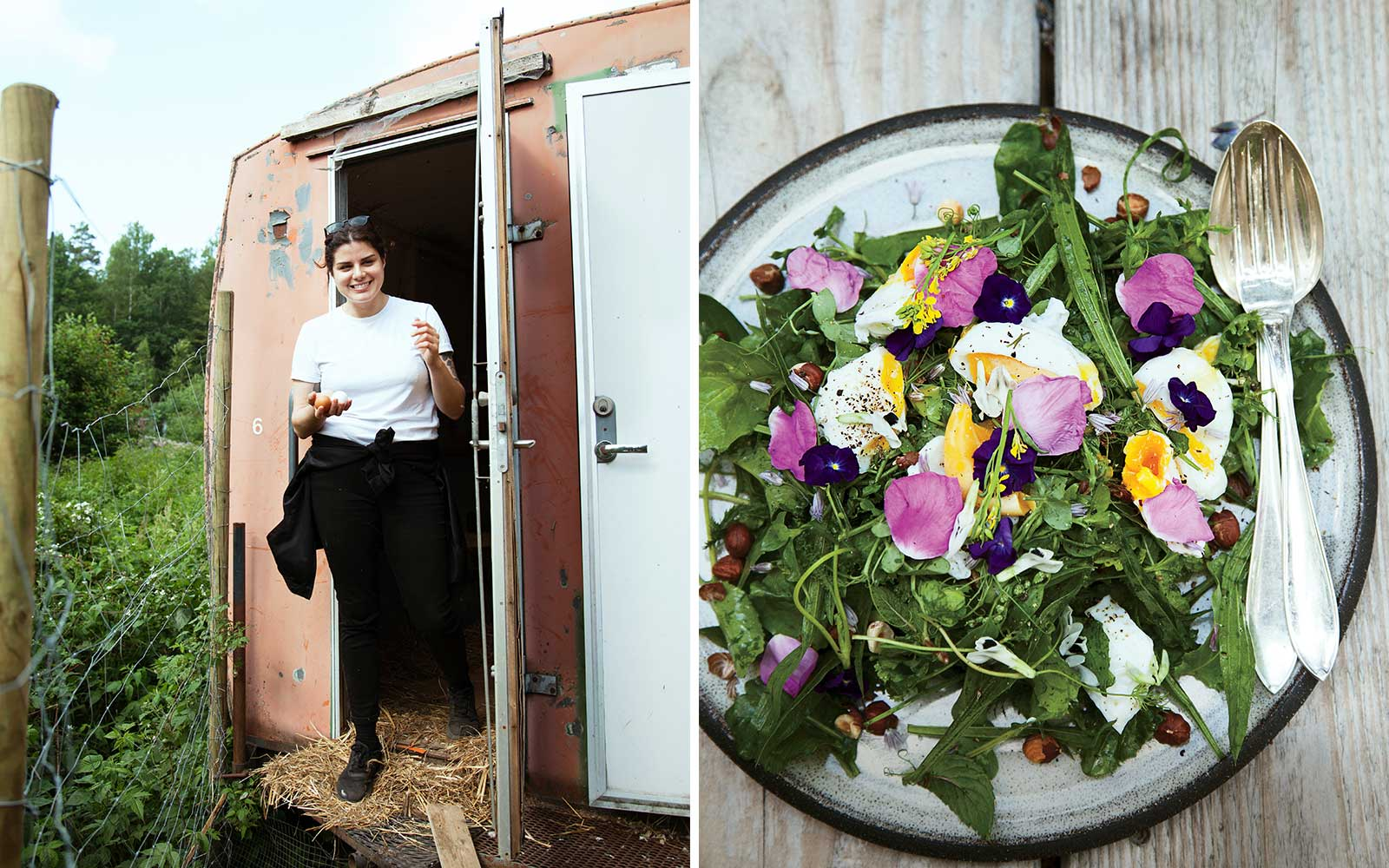 Chef Rosio Sanchez gathering eggs, and a salad of foraged greens, at Stedsans in the Woods, in Sweden