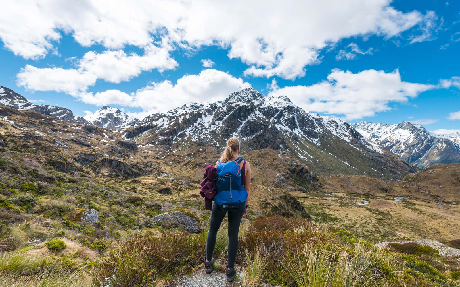 Hiker on the Routeburn Track, Westland District