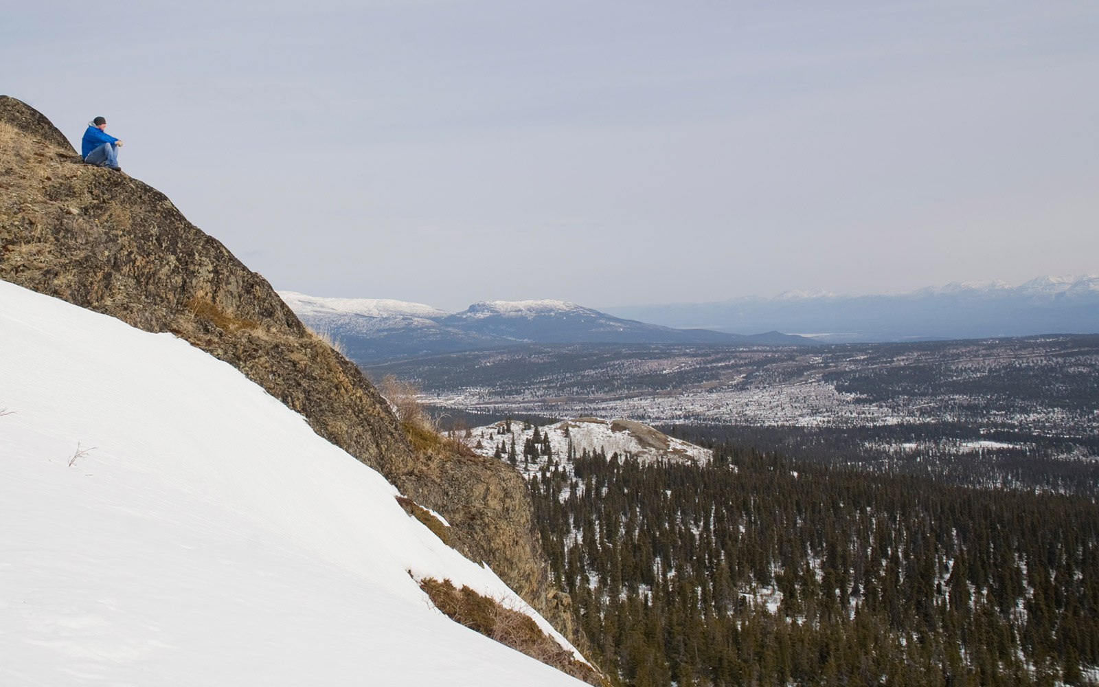 Hike Grey Mountain in Whitehorse