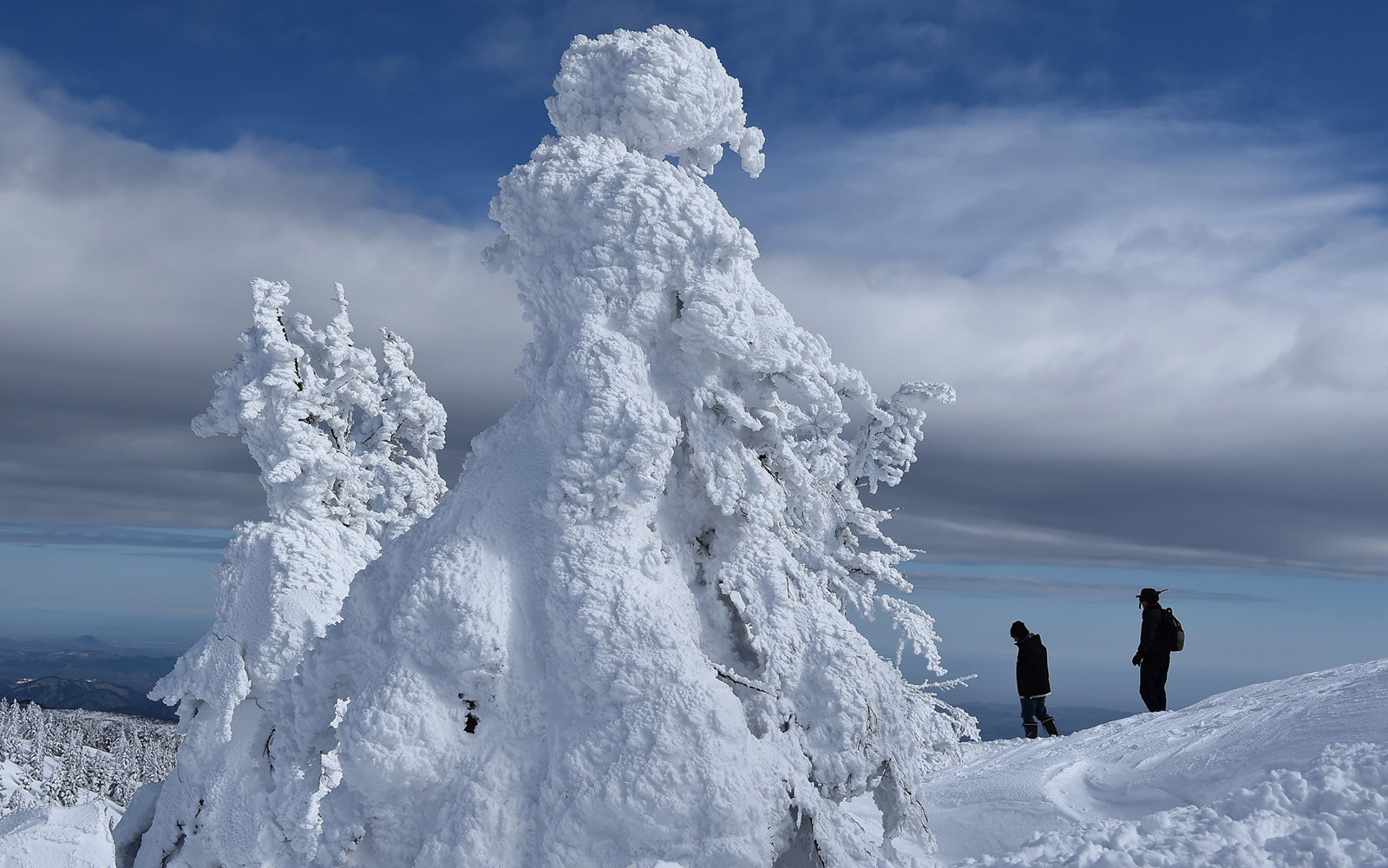 Snow monster trees in Japan