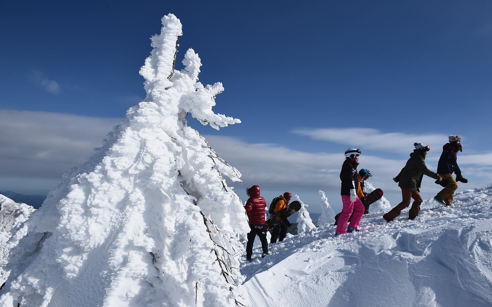 Snow monsters and skiers in Zao, Japan