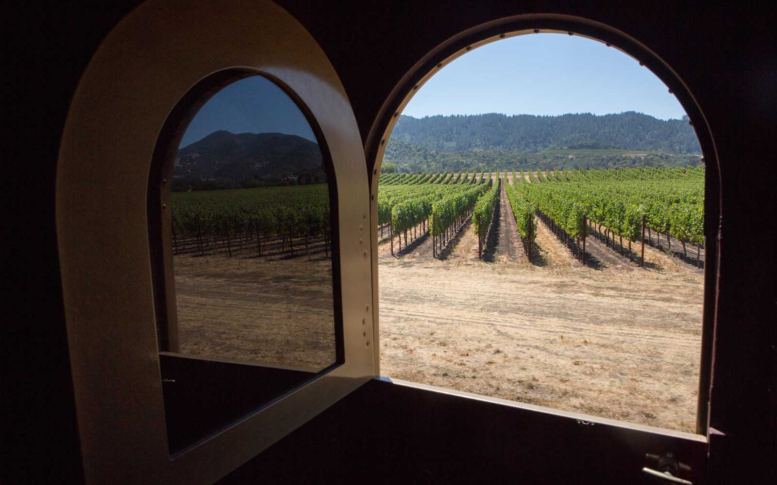 Rows of grape vineyards in Napa Valley are reflected in the window of the Napa Valley wine train.
