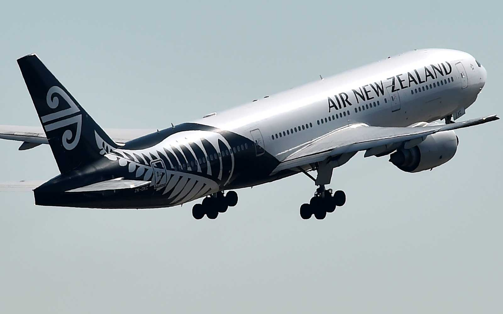 Air New Zealand Free Wifi