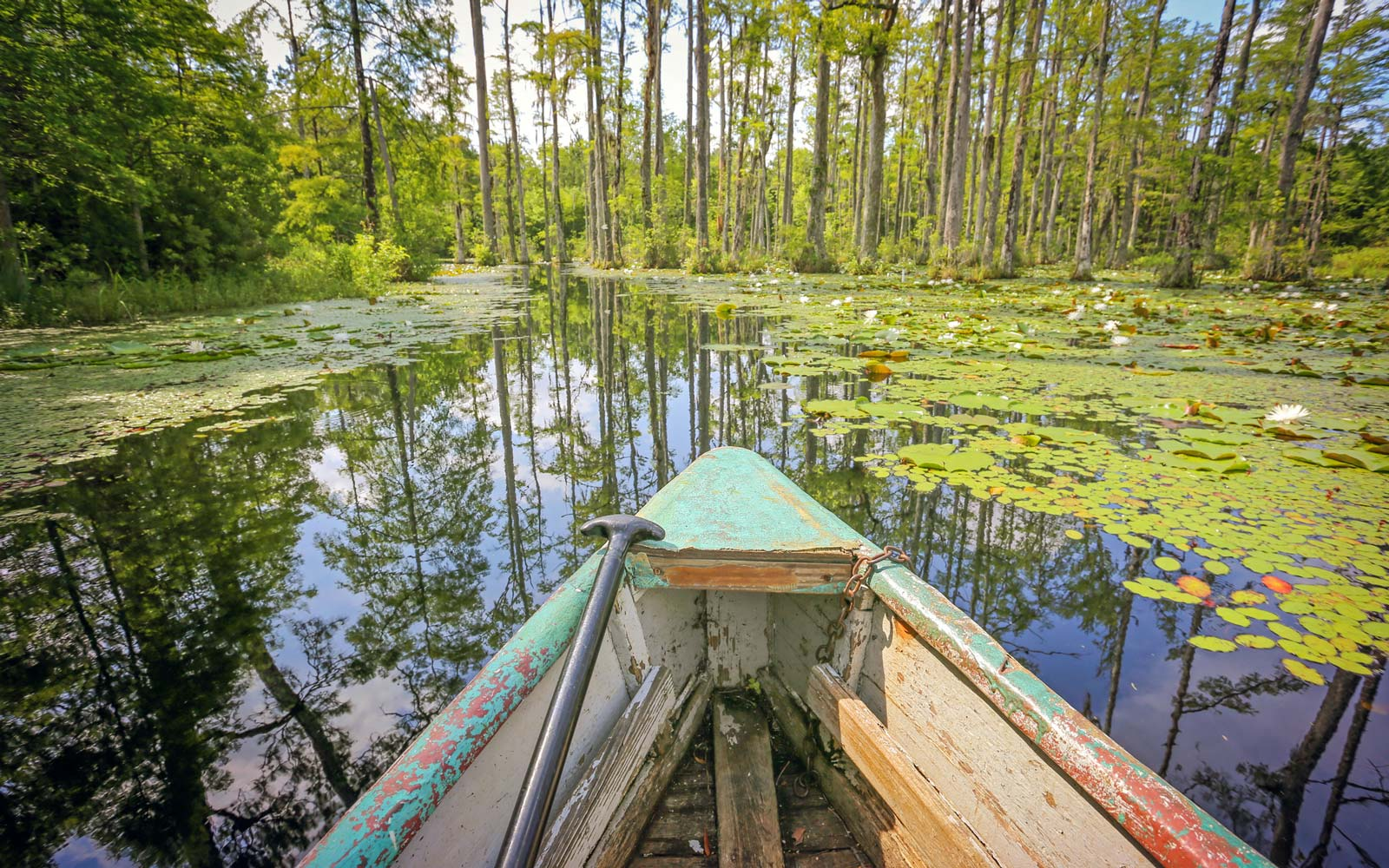 Boating in The lowcountry.
