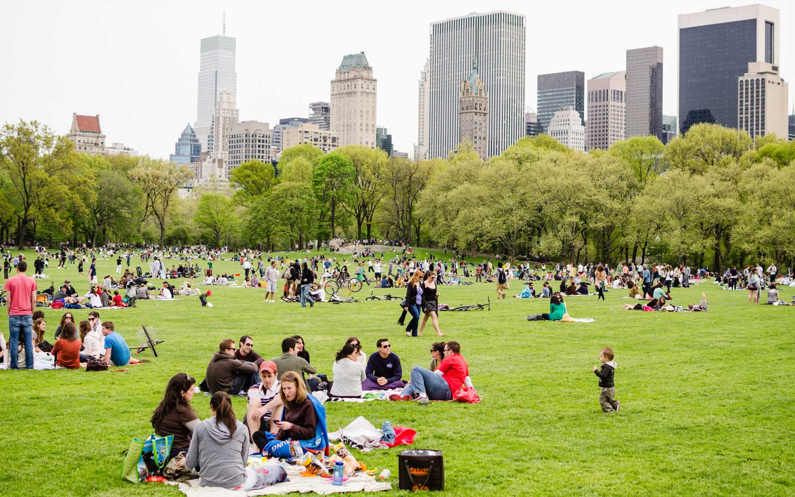 People having picnics in Central Park, New York City