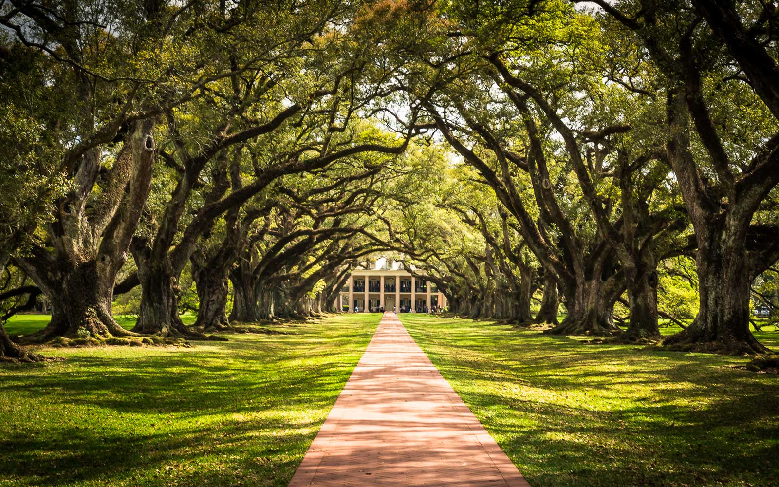 Oak Alley Plantation, Louisiana, Springtime