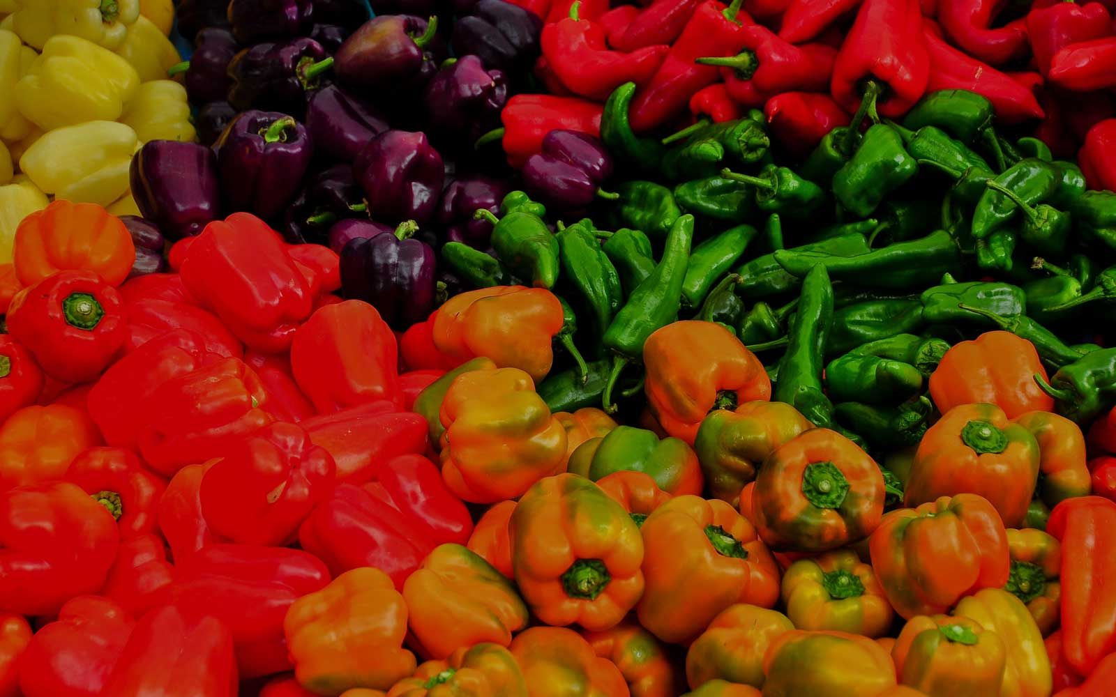 Take part in free cooking demonstrations at San Francisco's Ferry Building Farmer's Market.