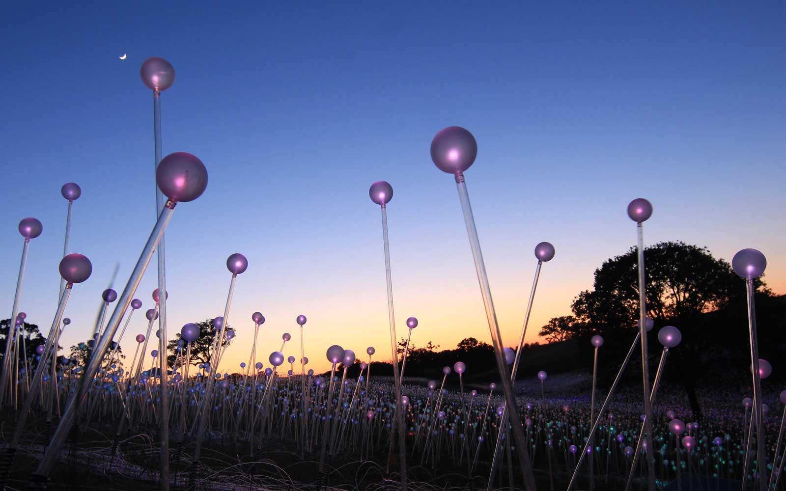 Field of Light at Sensorio in Paso Robles, California