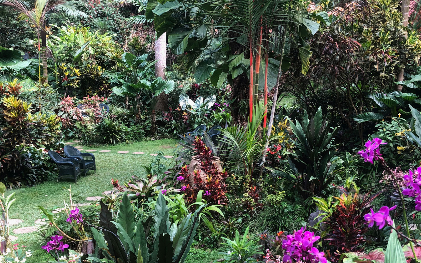 The Best Garden In The Caribbean Is Hiding In Someone S Backyard