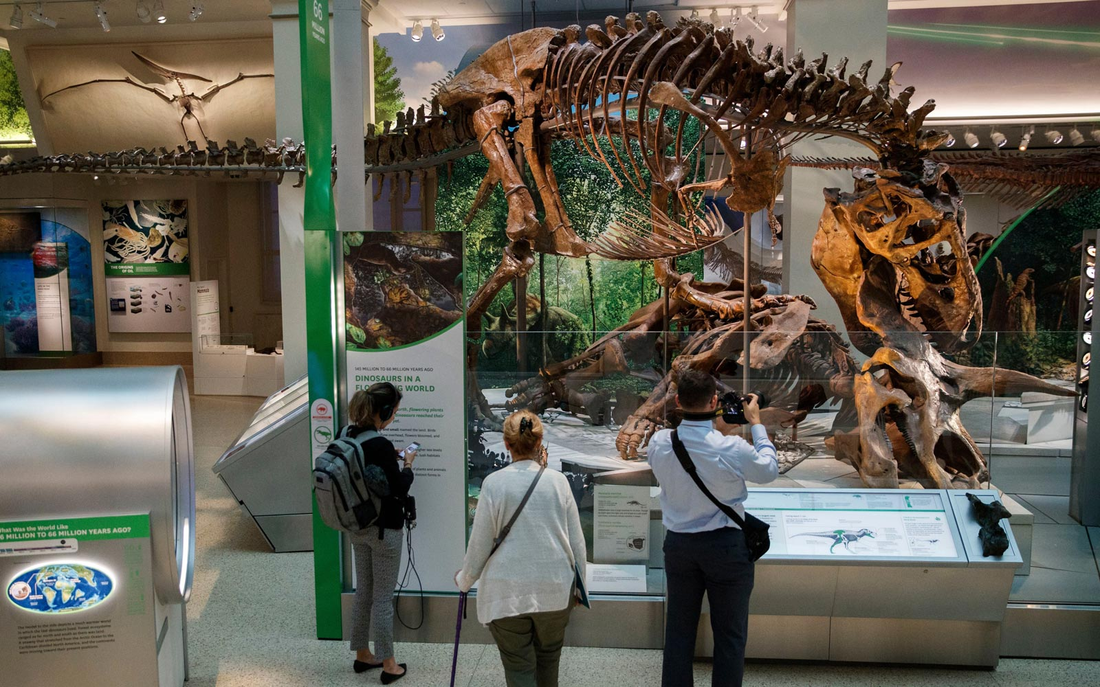 The Tyrannosaurus rex exhibit in the 'The David H. Koch Hall of Fossils-Deep Time' at the Smithsonian Institute National Museum of Natural History in Washington, DC