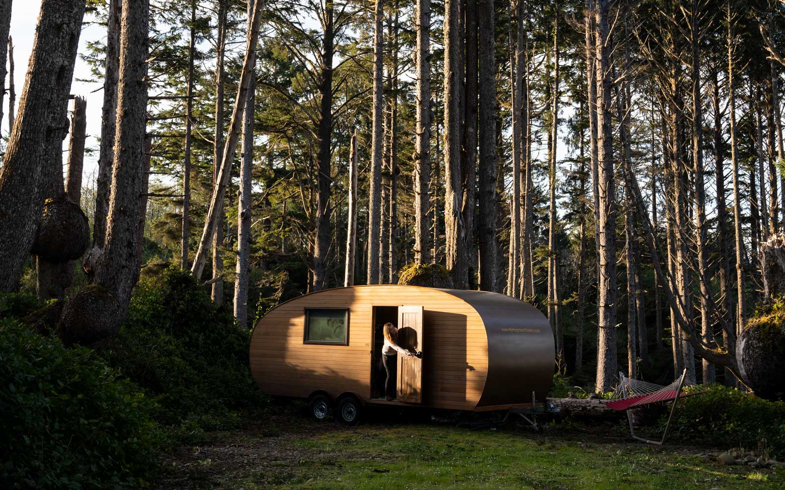Airbnb Experiences Silent Forest experience
