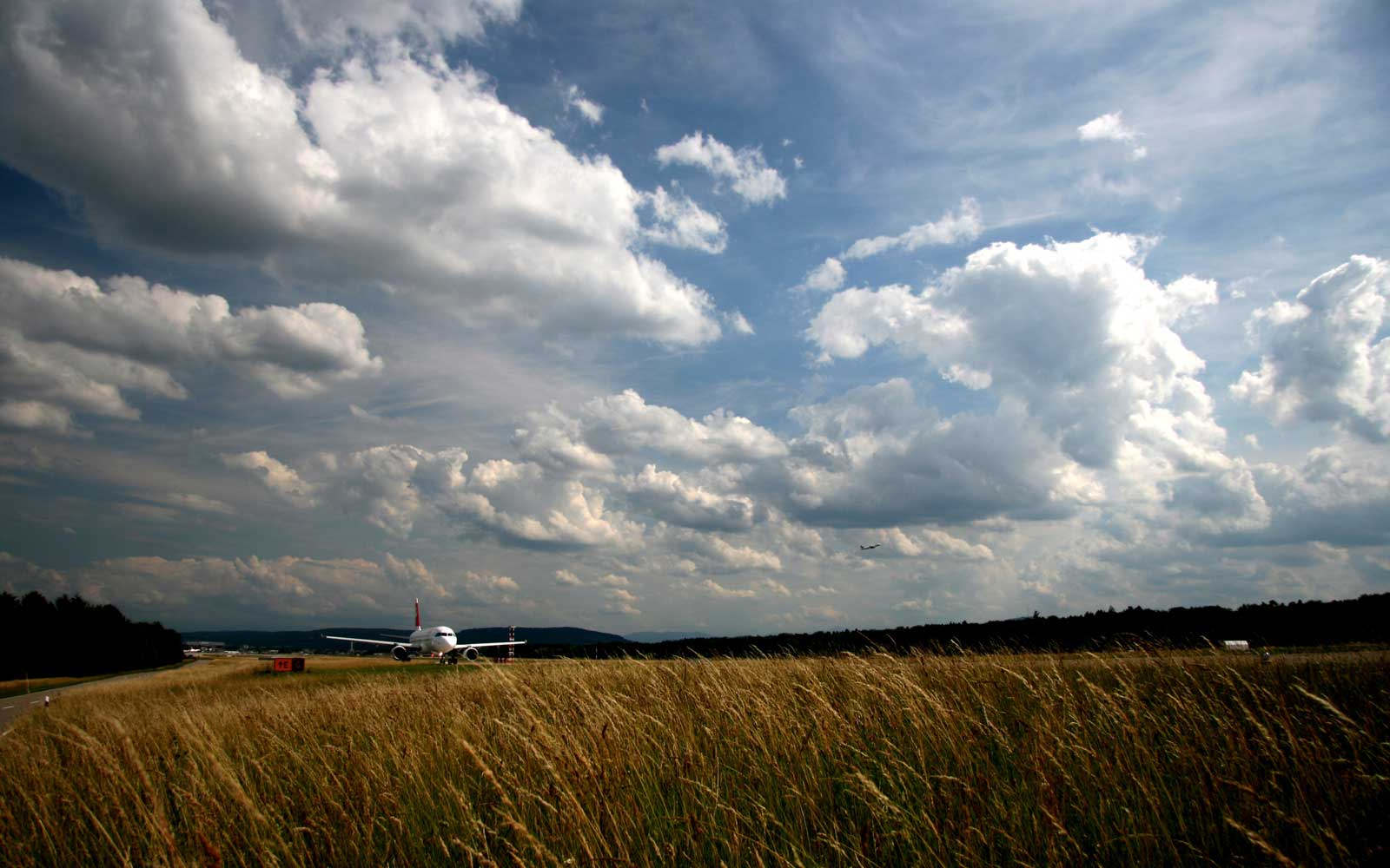 More than half of the airport consists of nature spaces.