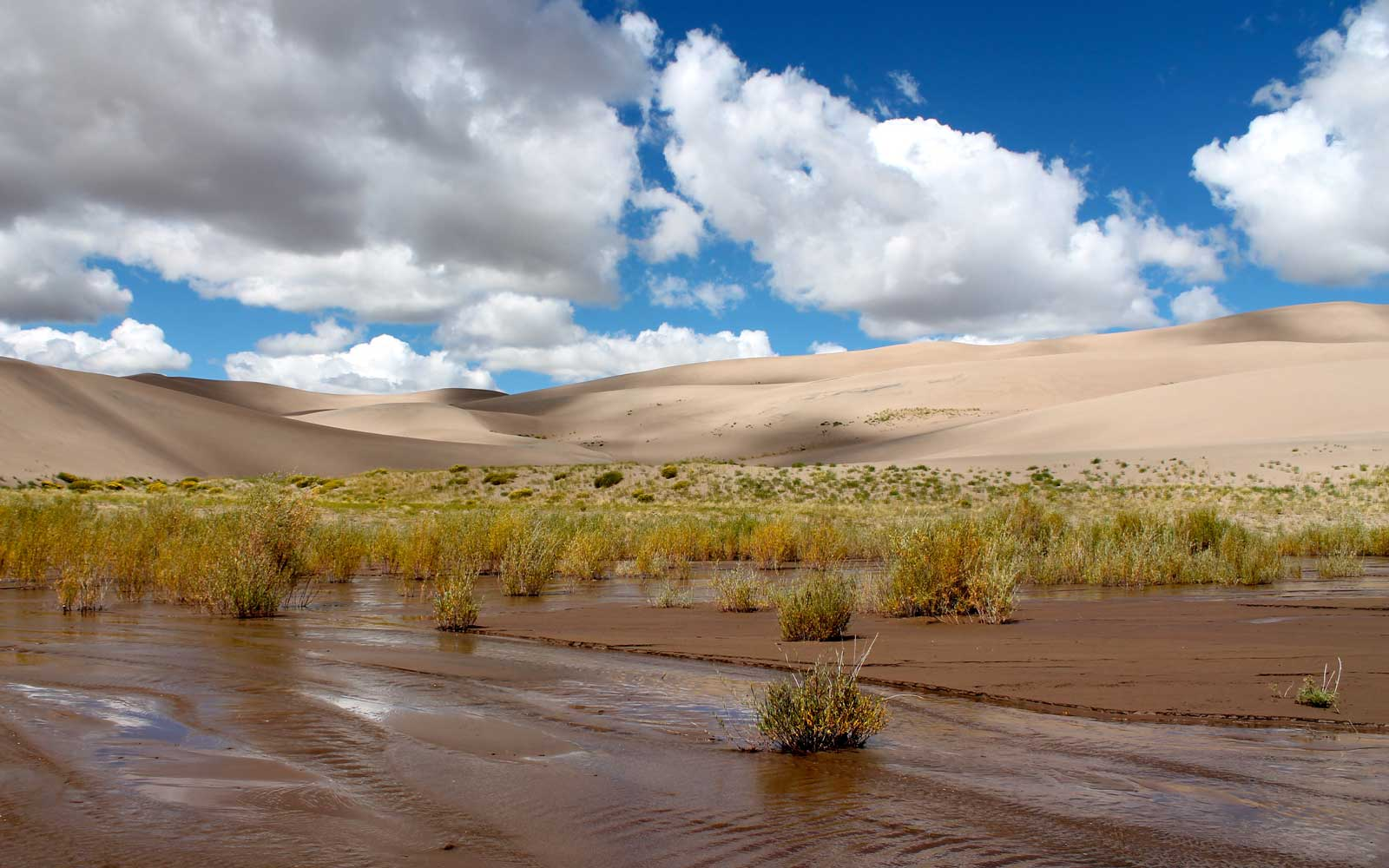 Explore a natural waterslide that arrives to Great Sand Dunes National Park each summer.