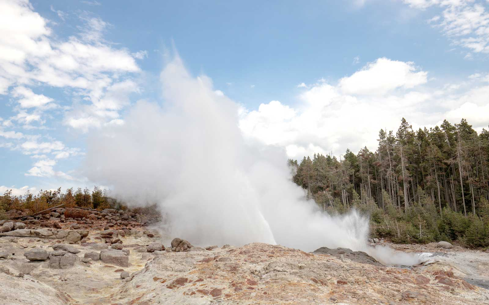 Steamboat geyser erupting in Yellowstone's Norris Geyser basin