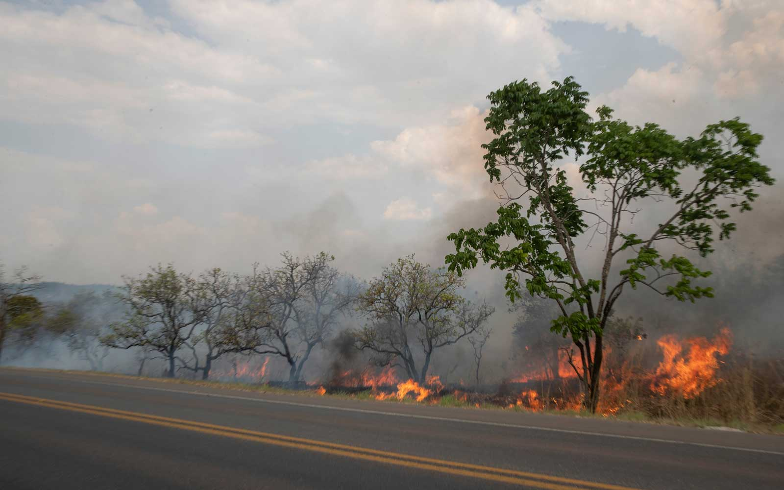 Fire consumes a field along the BR 070 highway near Cuiaba, Mato Grosso state, Brazil