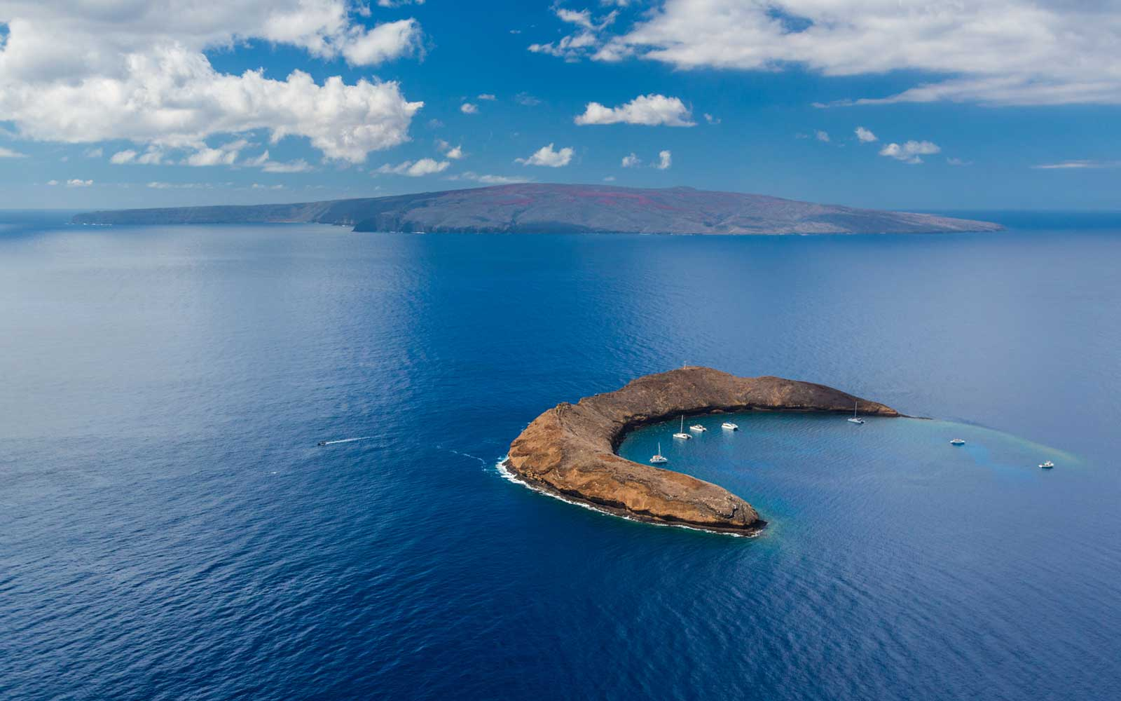 Snorkel Boats at Molokini