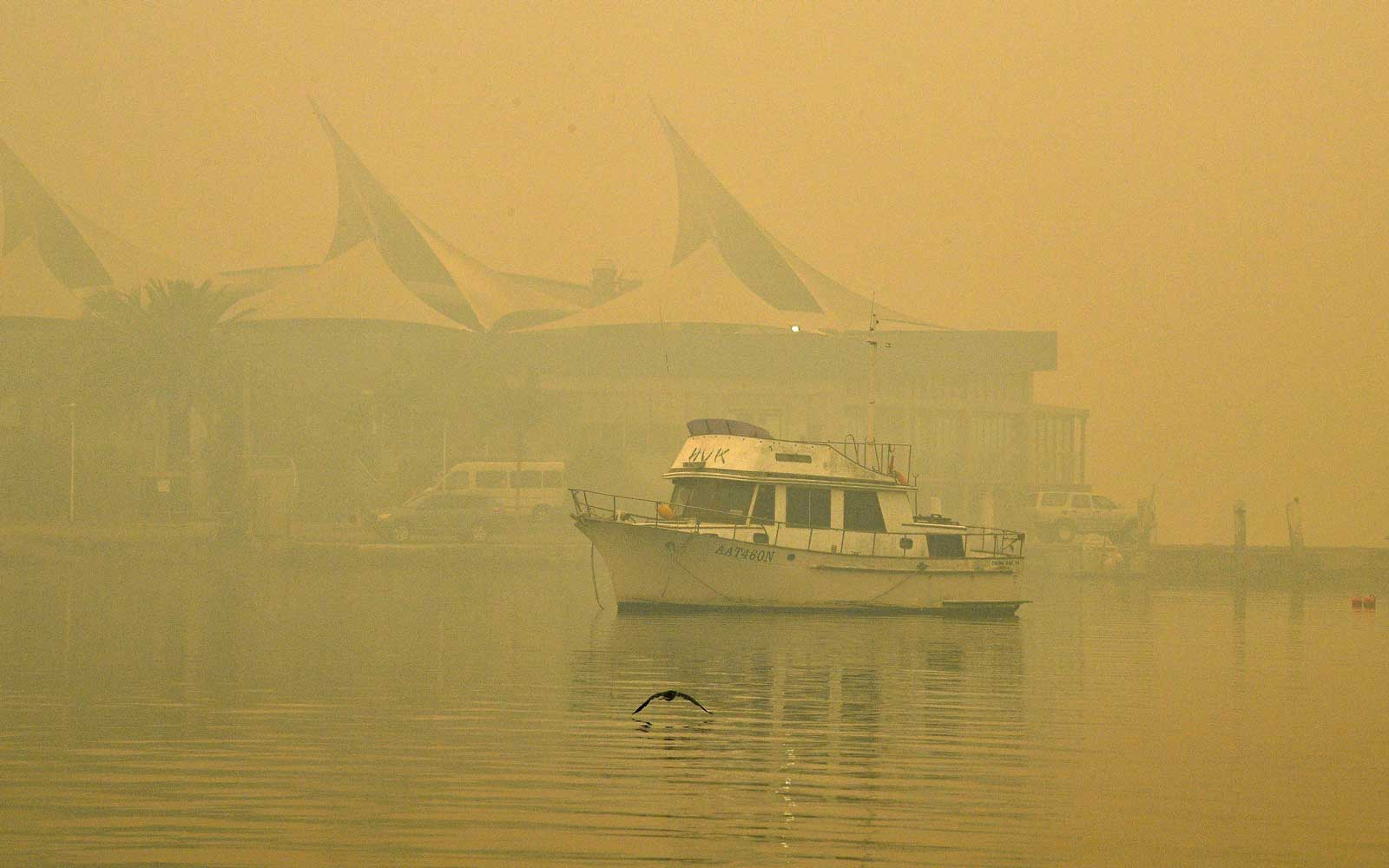 Toxic haze blanketed Sydney on December 10