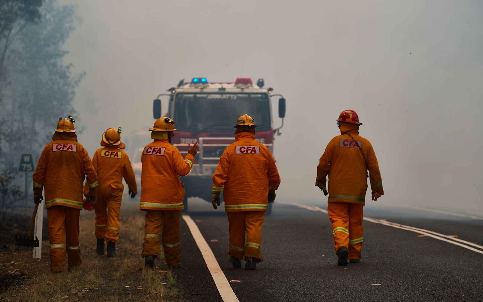 Royal Caribbean Is Treating Australian First Responders to a Free Cruise Following Bushfires