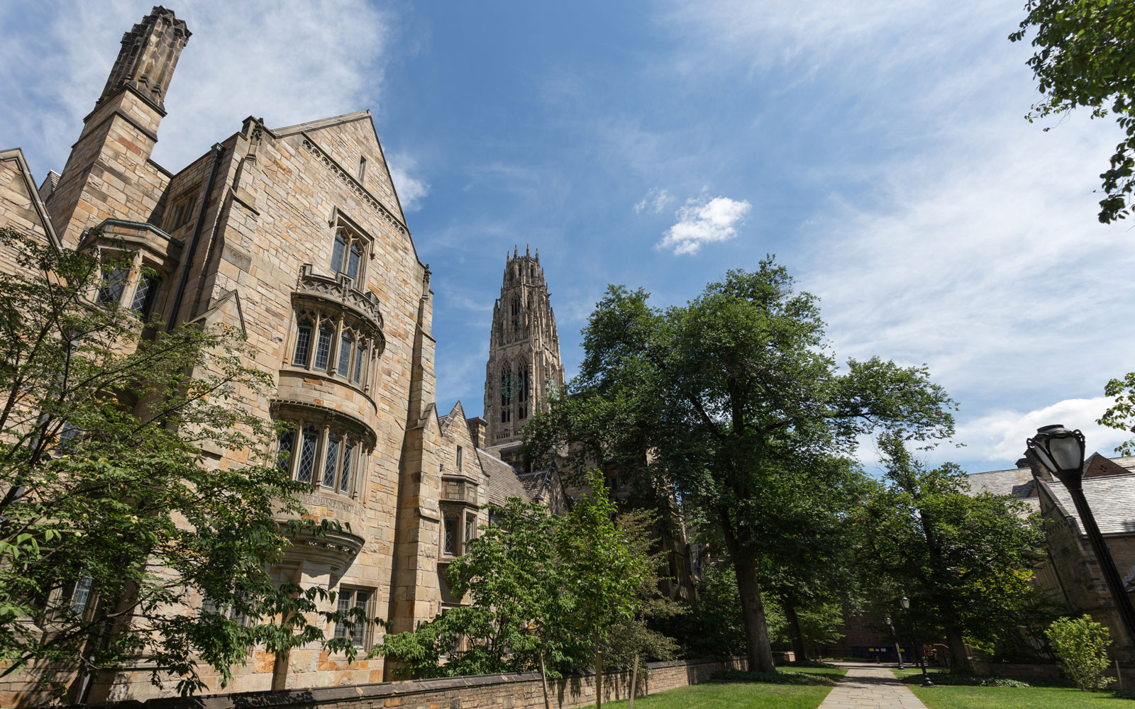 Library Walk at Yale