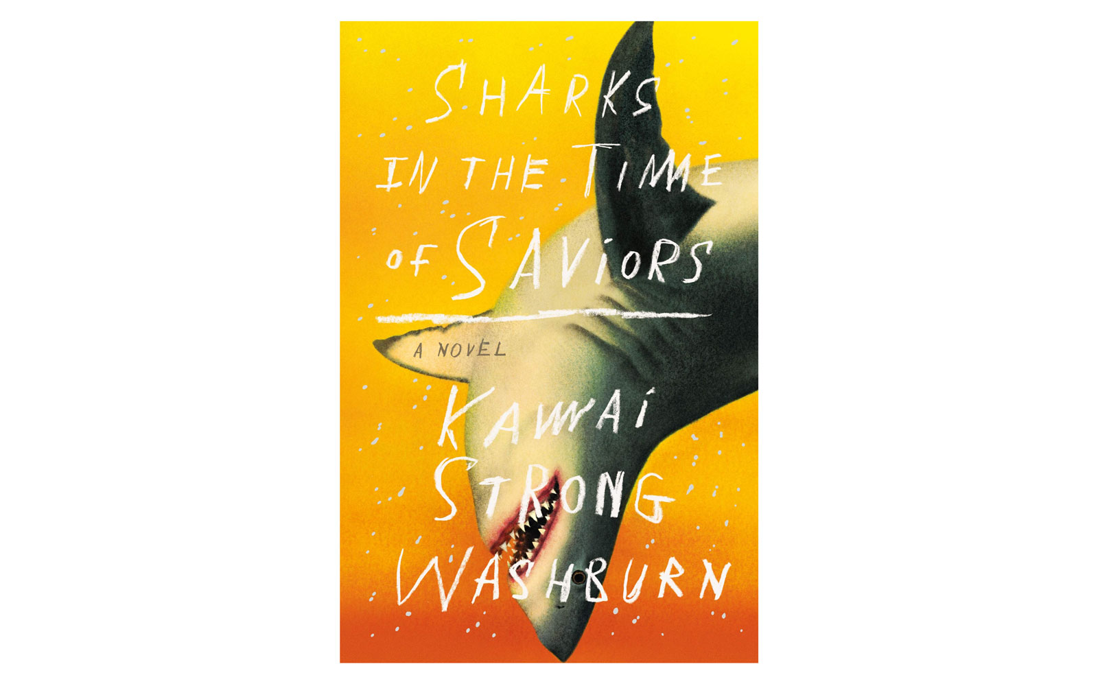 Sharks in the Time of Saviors book