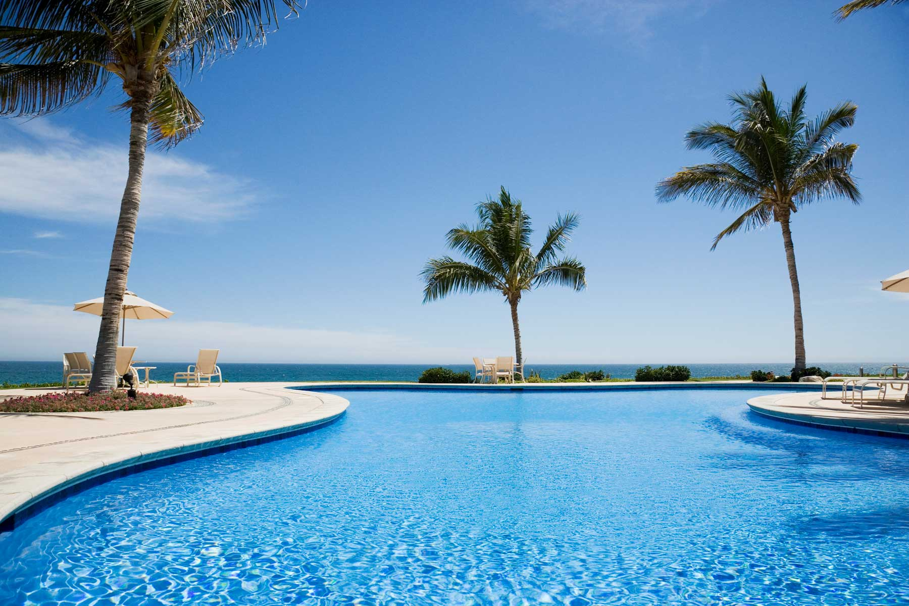 Vibrant blue water of a hotel pool surrounded by palm trees near the ocean