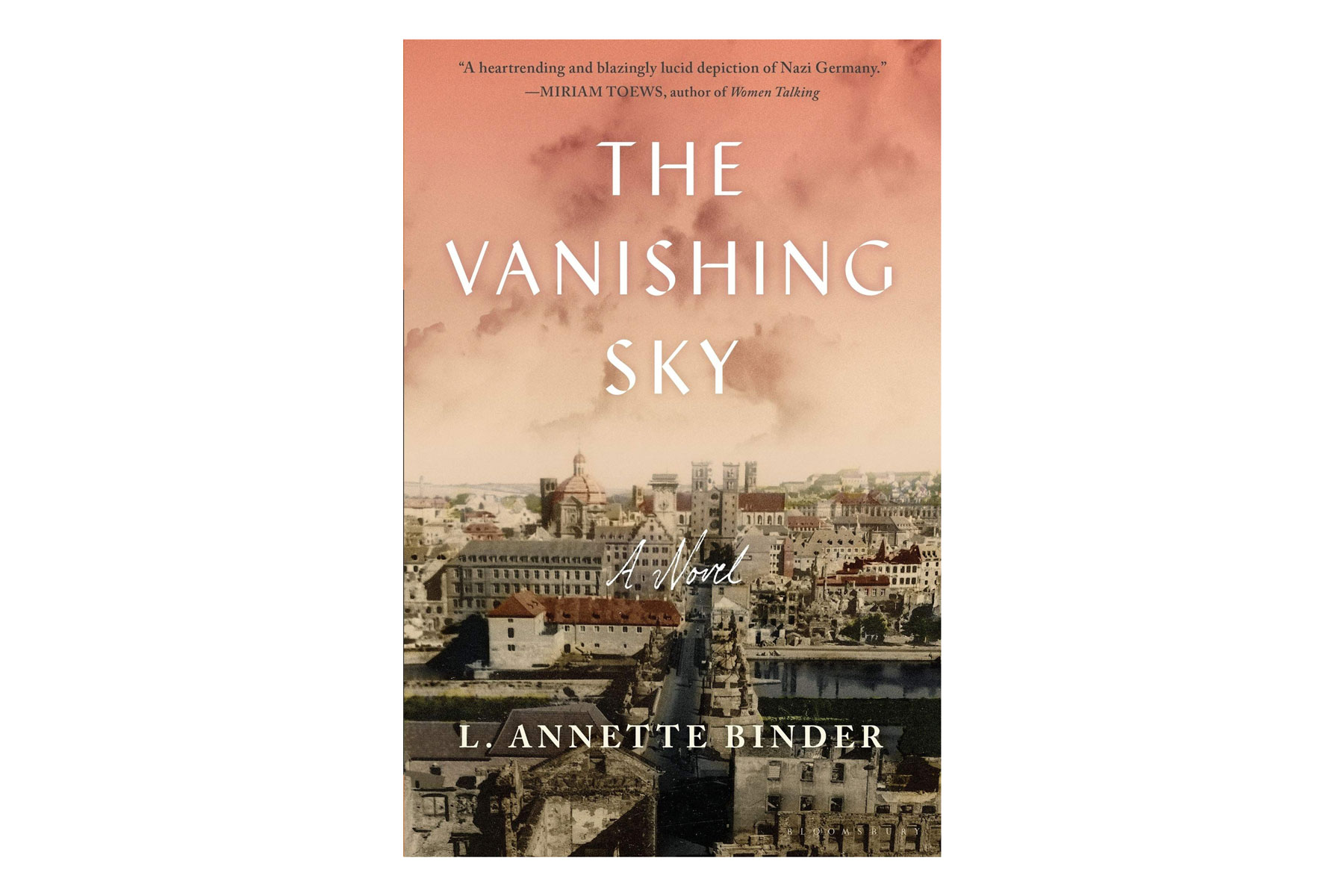 The Vanishing Sky book