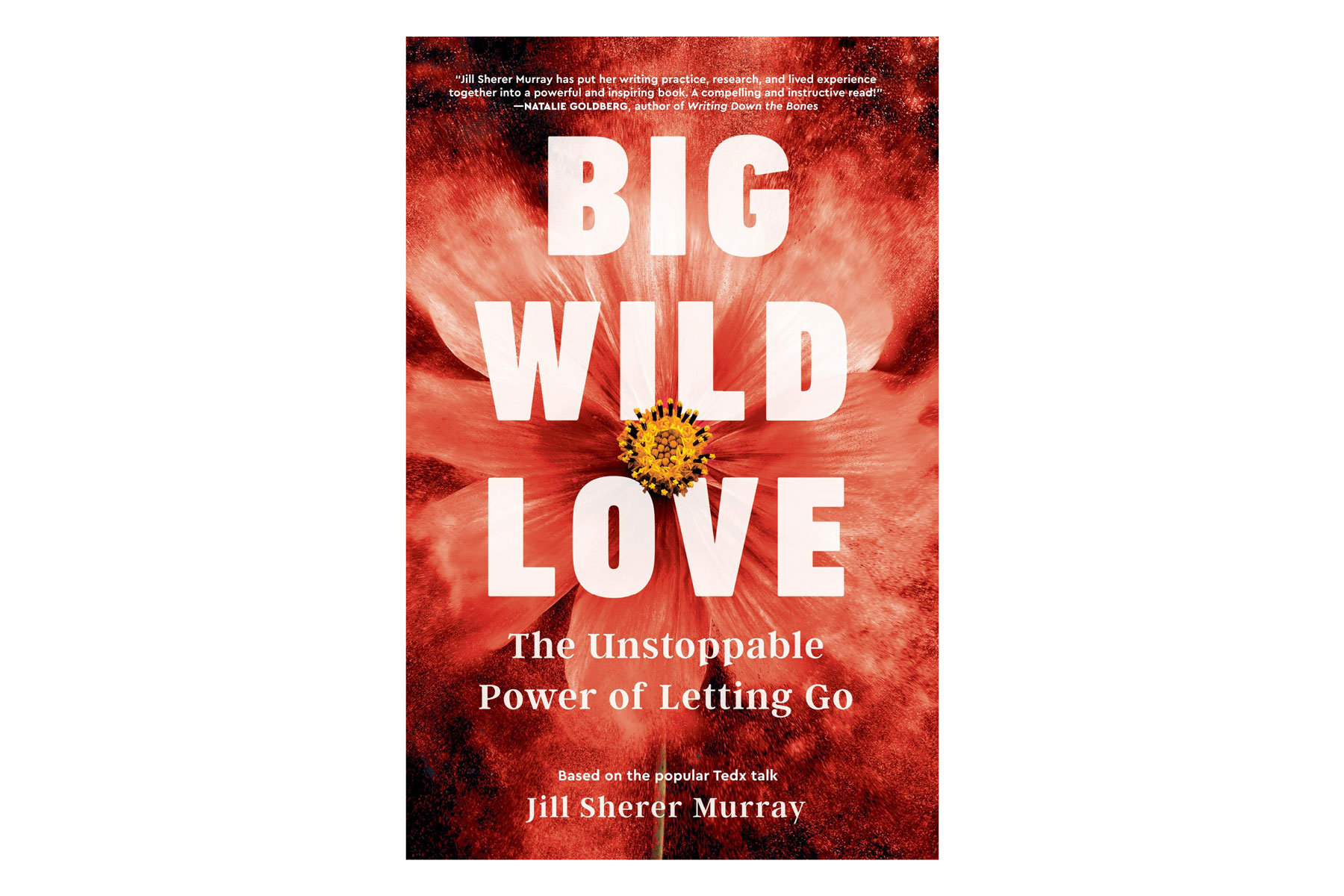 Big Wild Love book