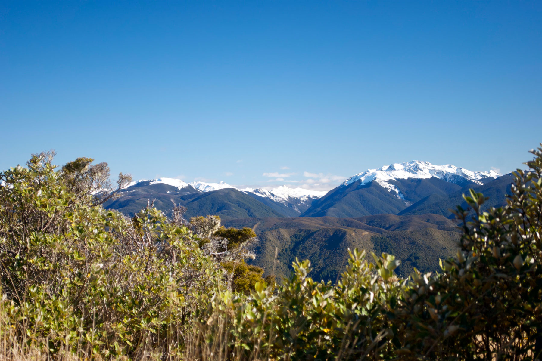 Kahurangi National Park, New Zealand
