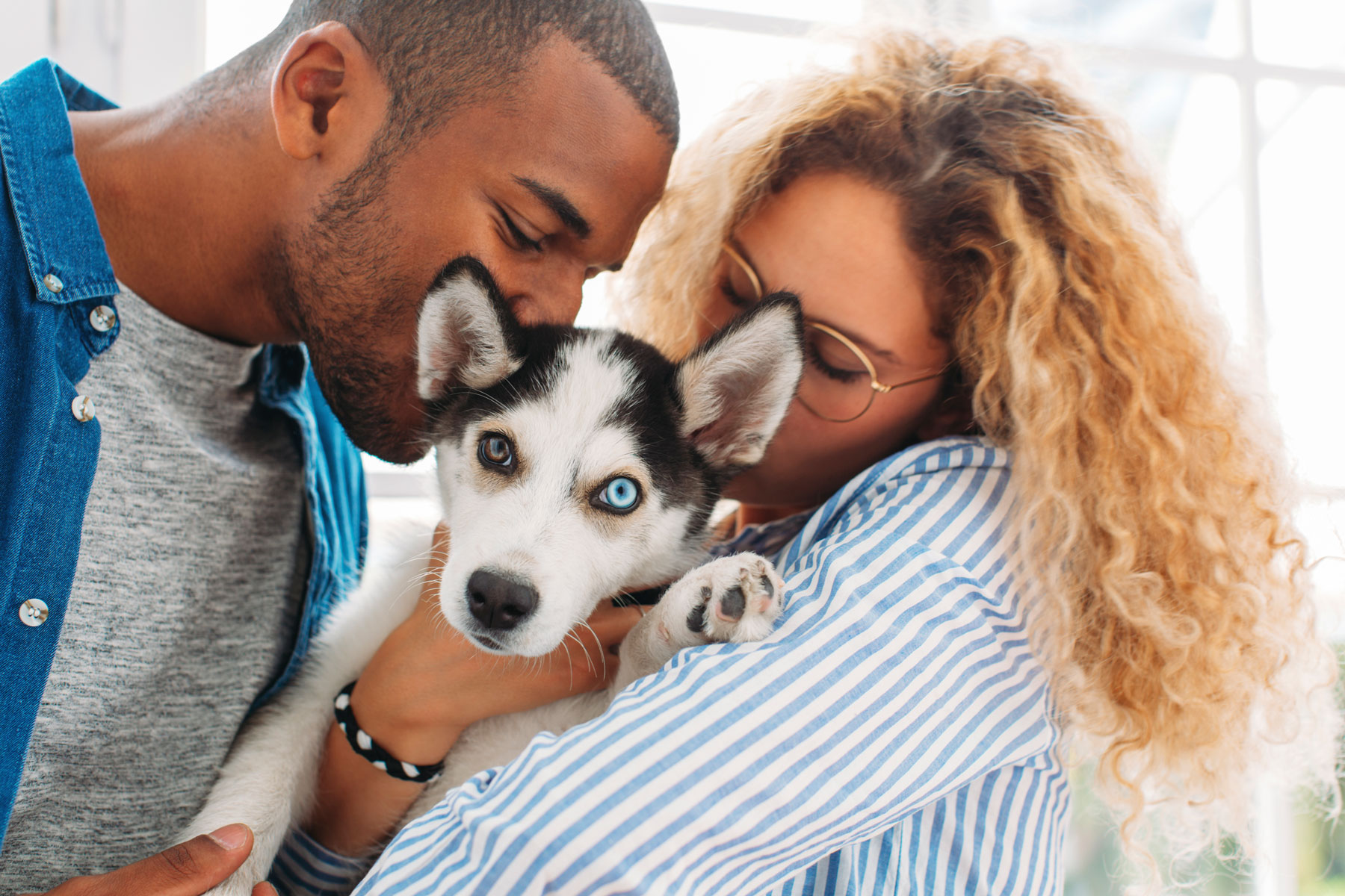 You Can Find More Than Just Puppy Love on This Dating App Made for Dog Owners