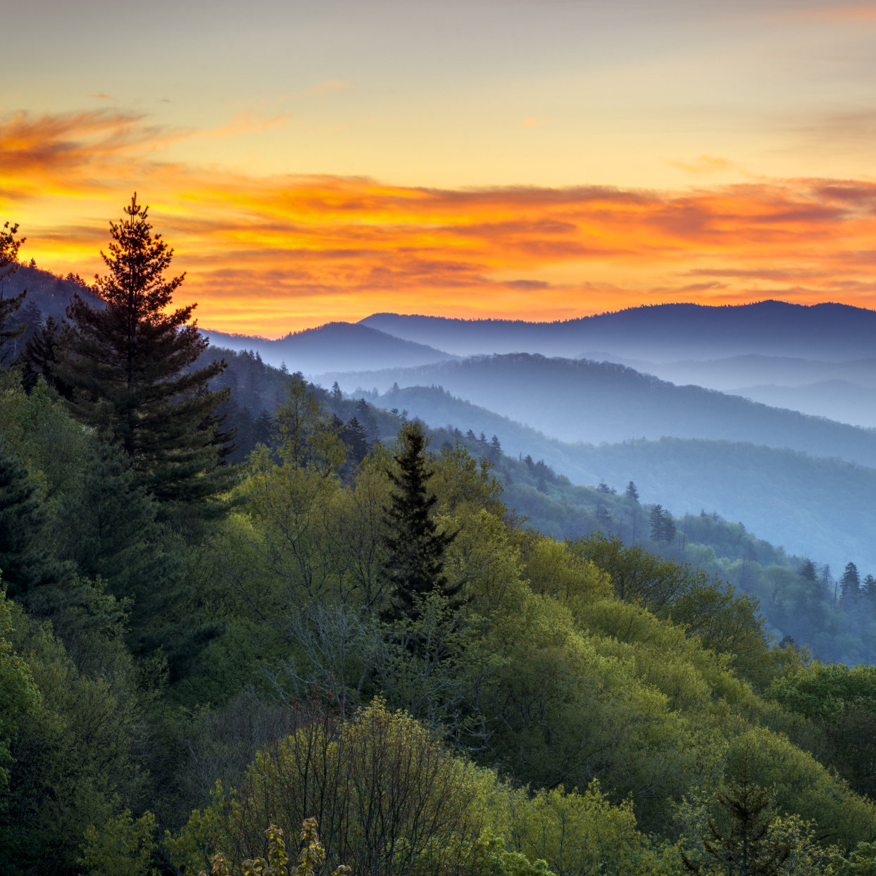 Blue ridge mountains covered by mist and an orange sky