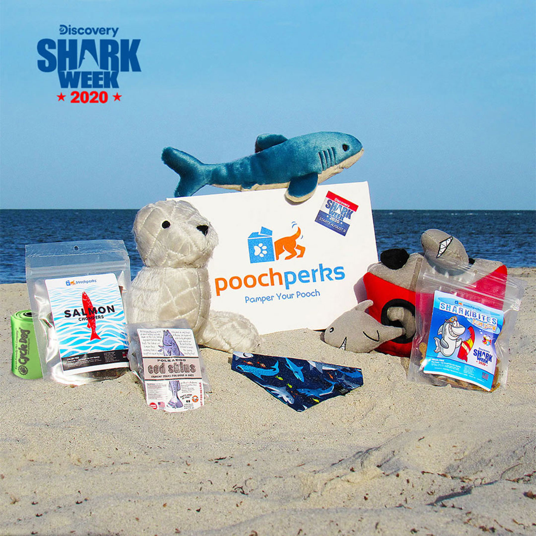 box of 'Shark Week' themed dog toys by the ocean