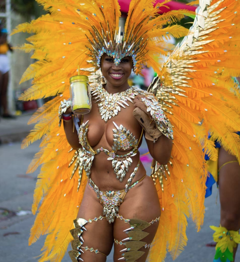Woman in beautiful carnival outfit