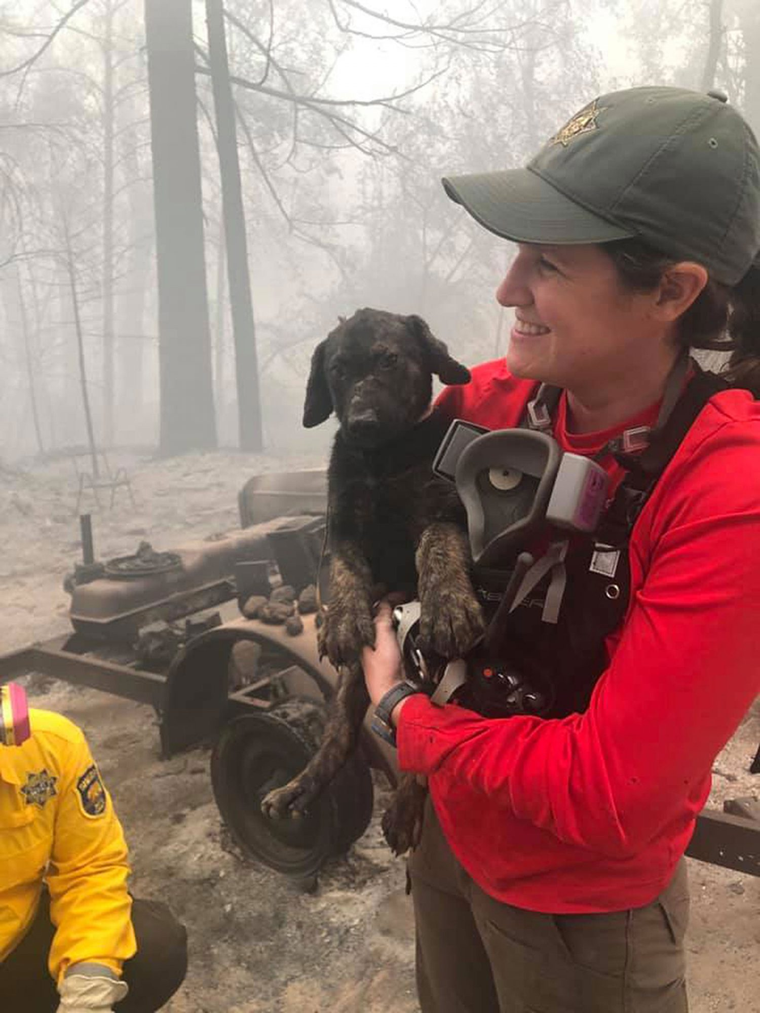 rescue worker holding dog