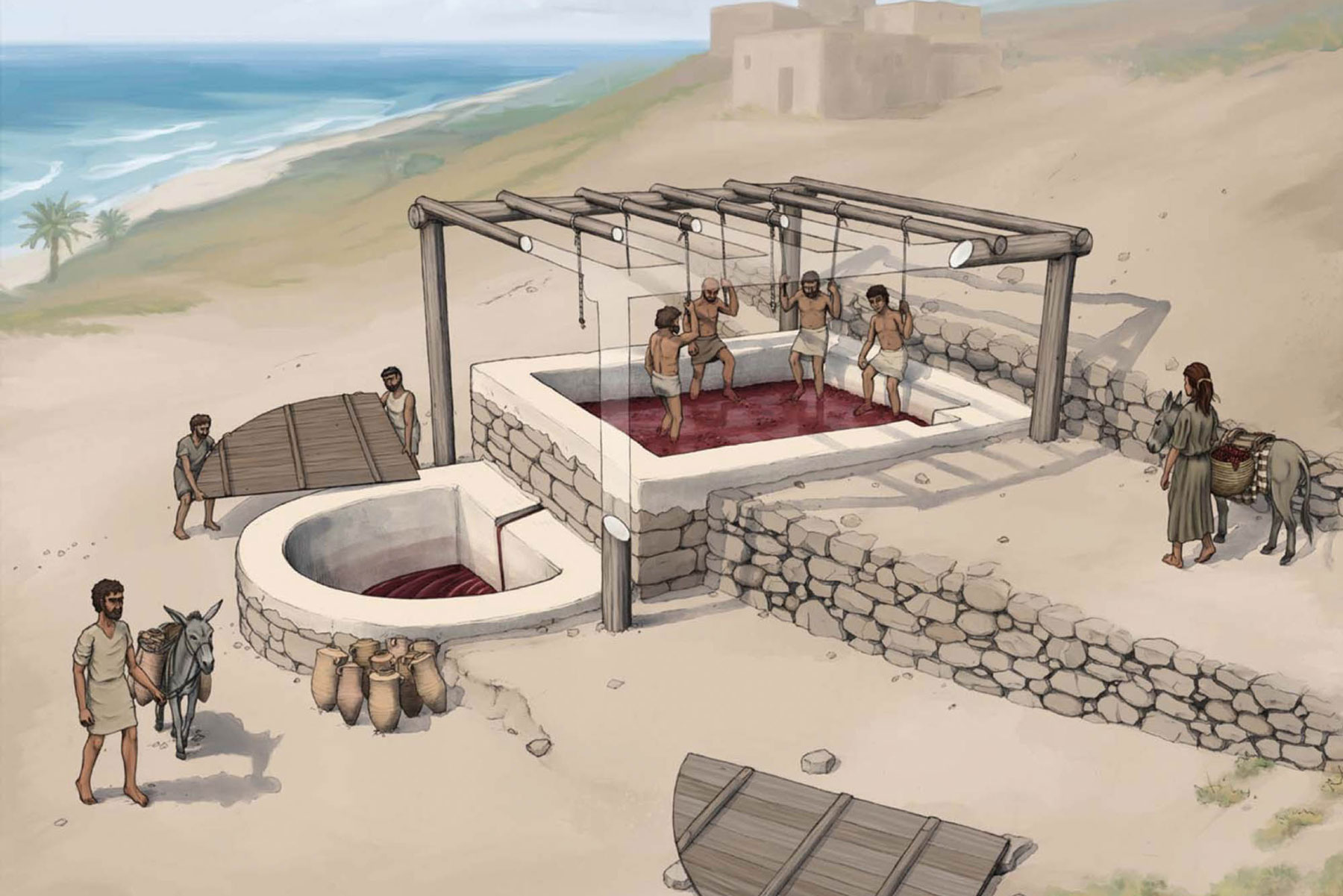 Reconstruction of the wine press at Tell el-Burak, looking from the southeast
