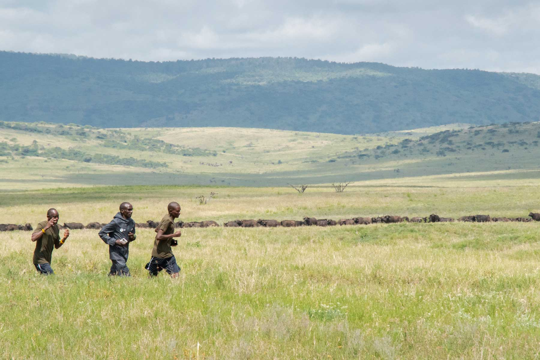 World record holder Eliud Kipchoge runs with rangers in Lewa Wildlife Conservancy, Kenya