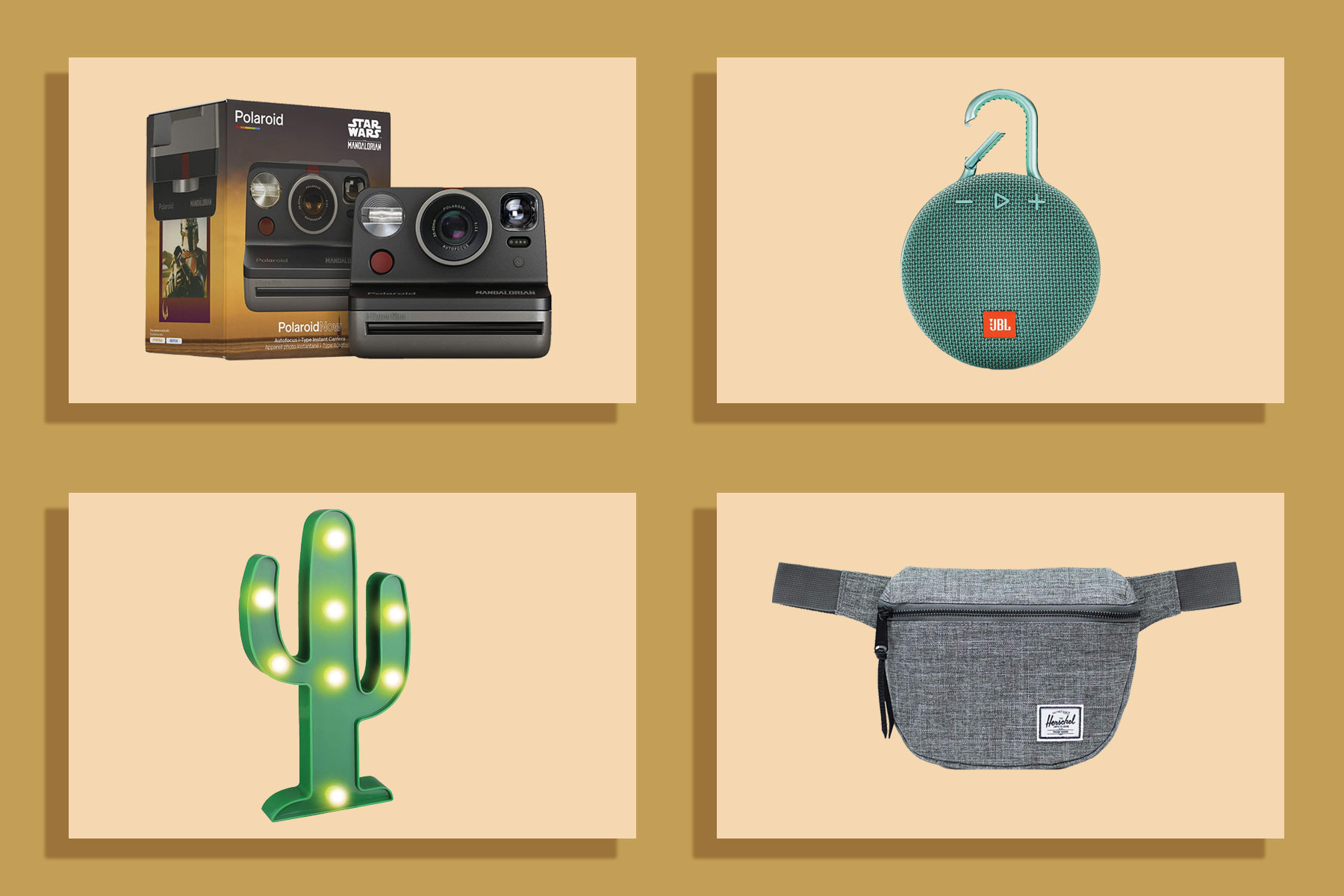 Camera, speaker, cactus light, fanny pack