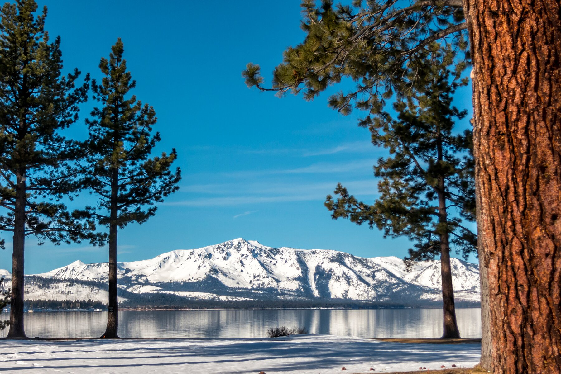 This image was taken at Stateline, NV looking toward Mount Tallac in Lake Tahoe. Winter scene.
