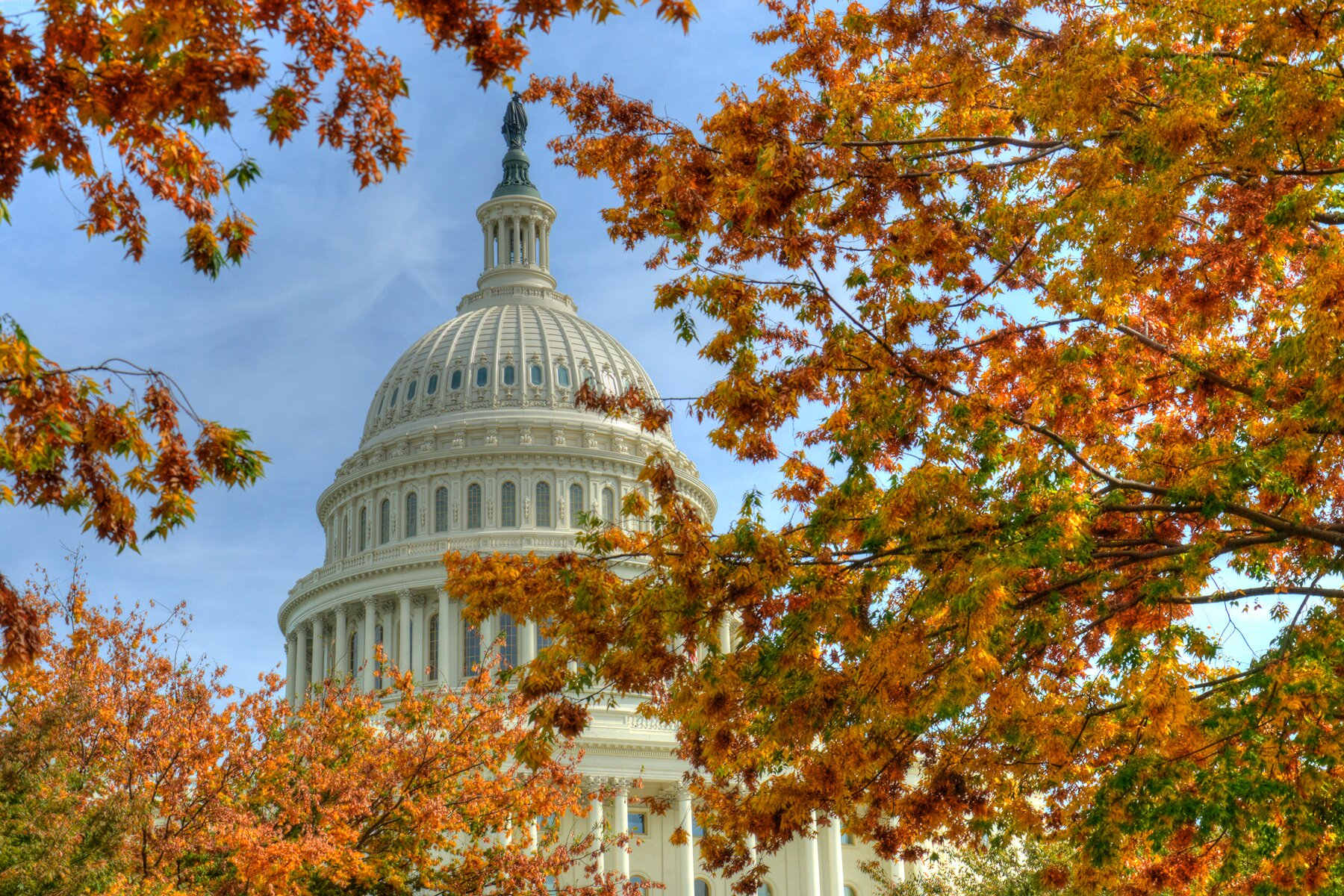 U.S. Capitol Building seen through autumn leaves in Washington, D.C.