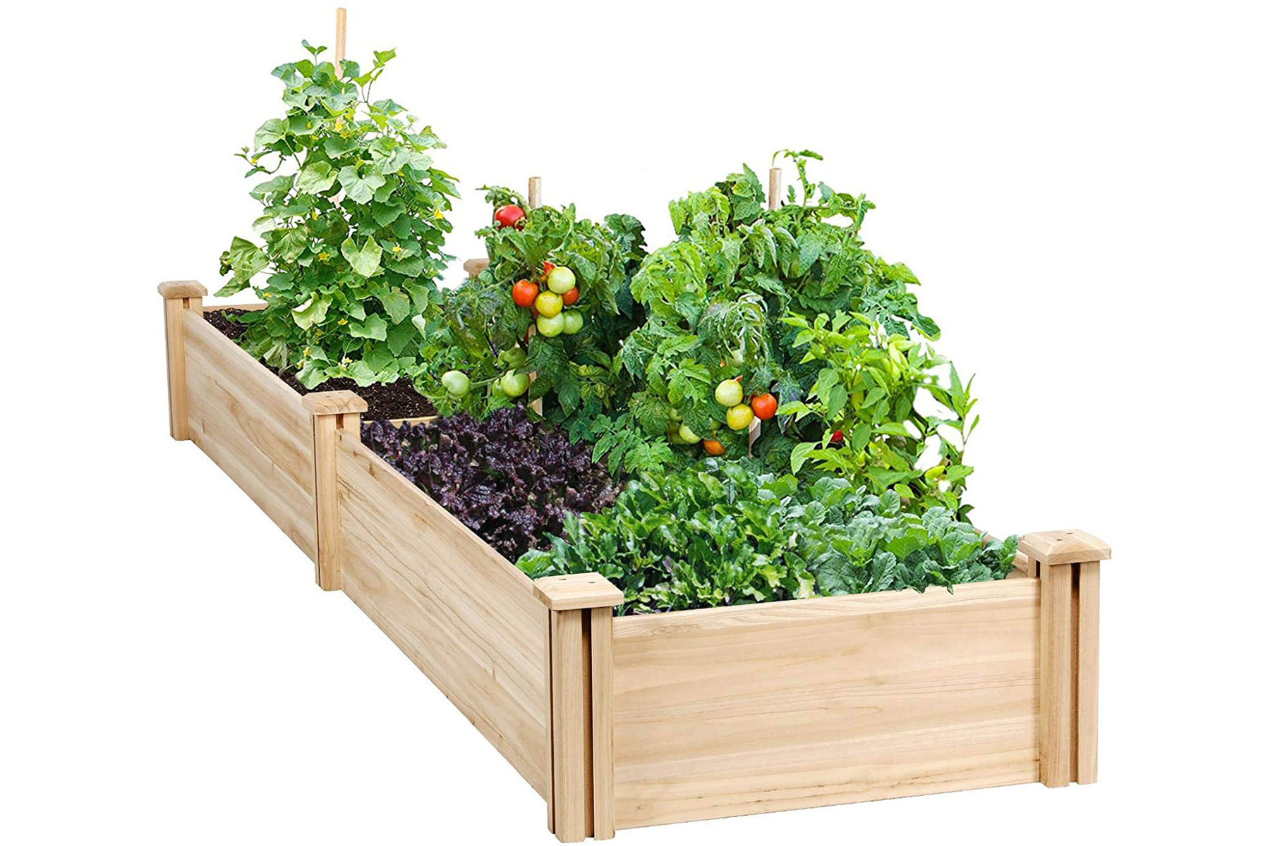 wooden planter box with vegetables