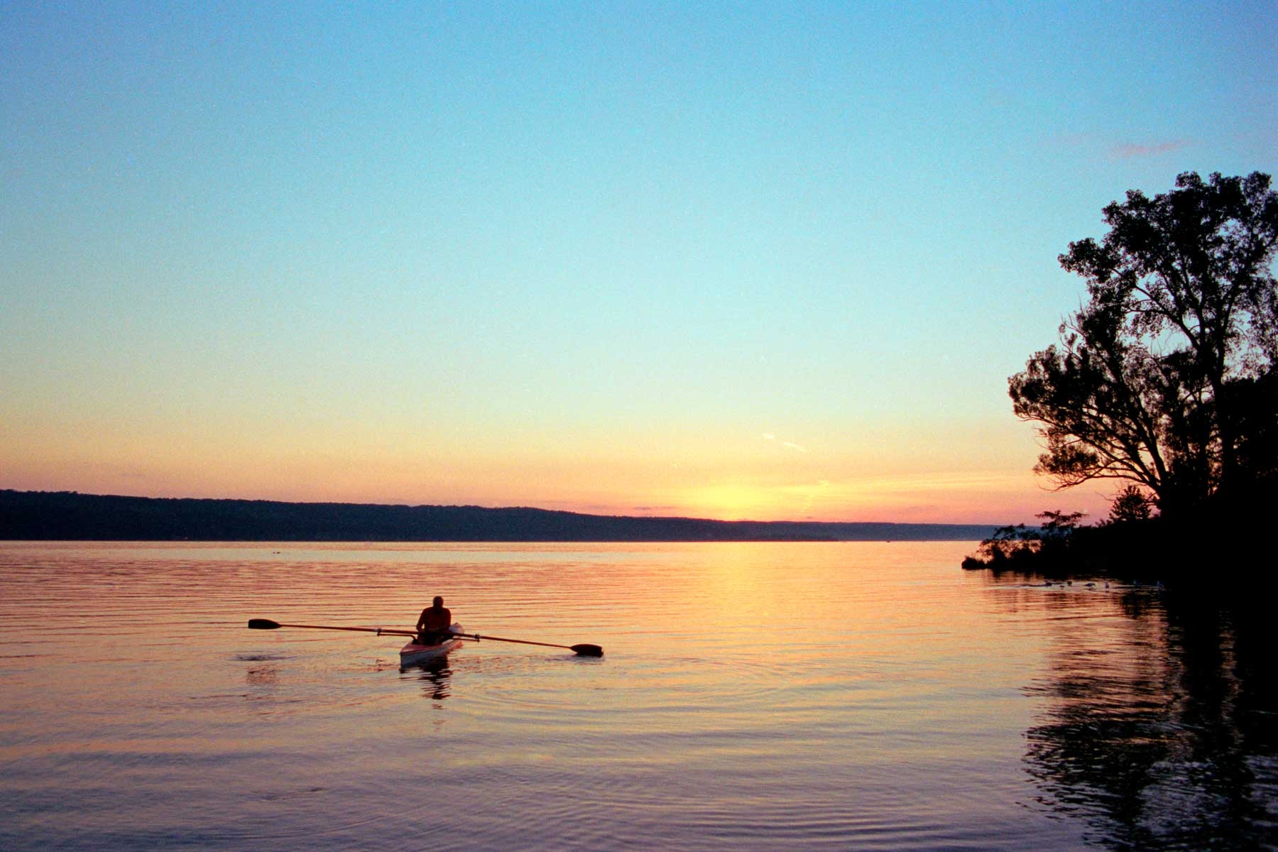 Silhouette of Man rowing Boat on Lake at Sunset