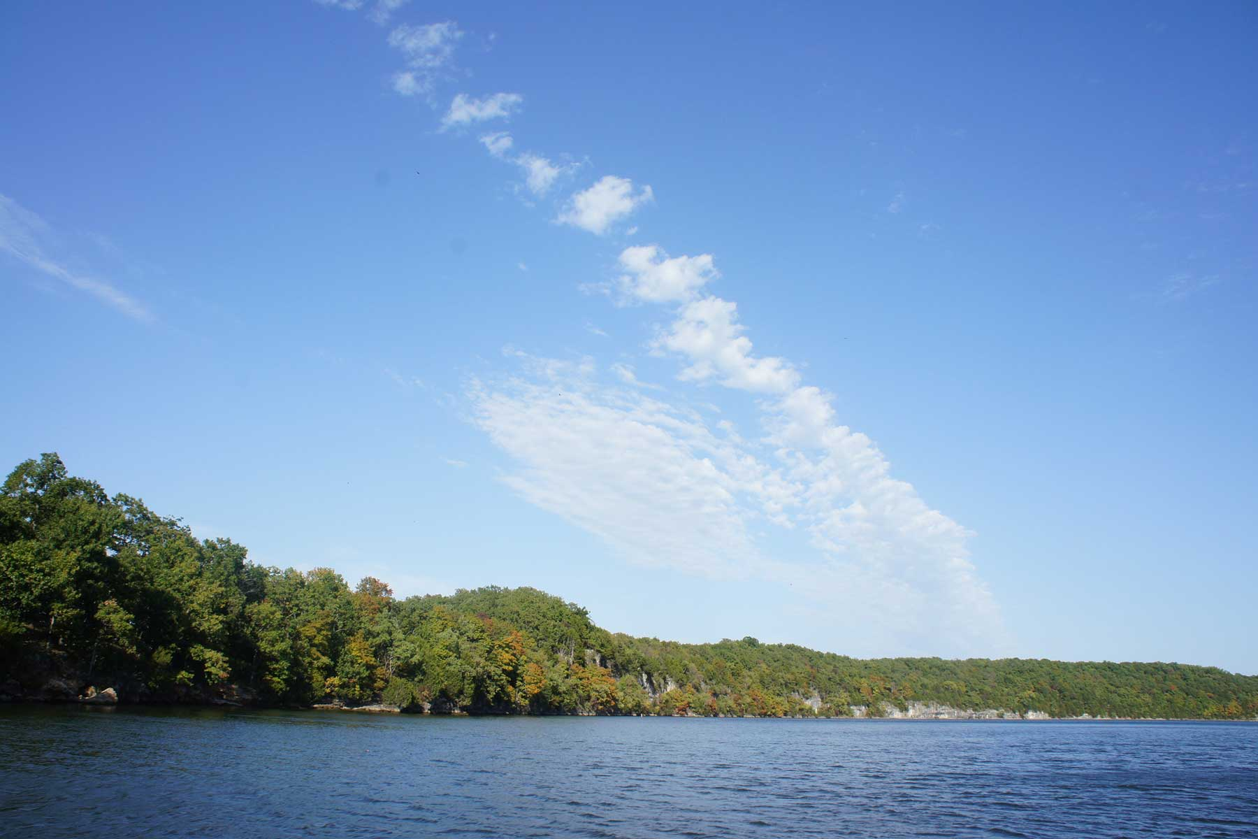 Blue skies, a green tree line along the lake of the Ozark in Missouri