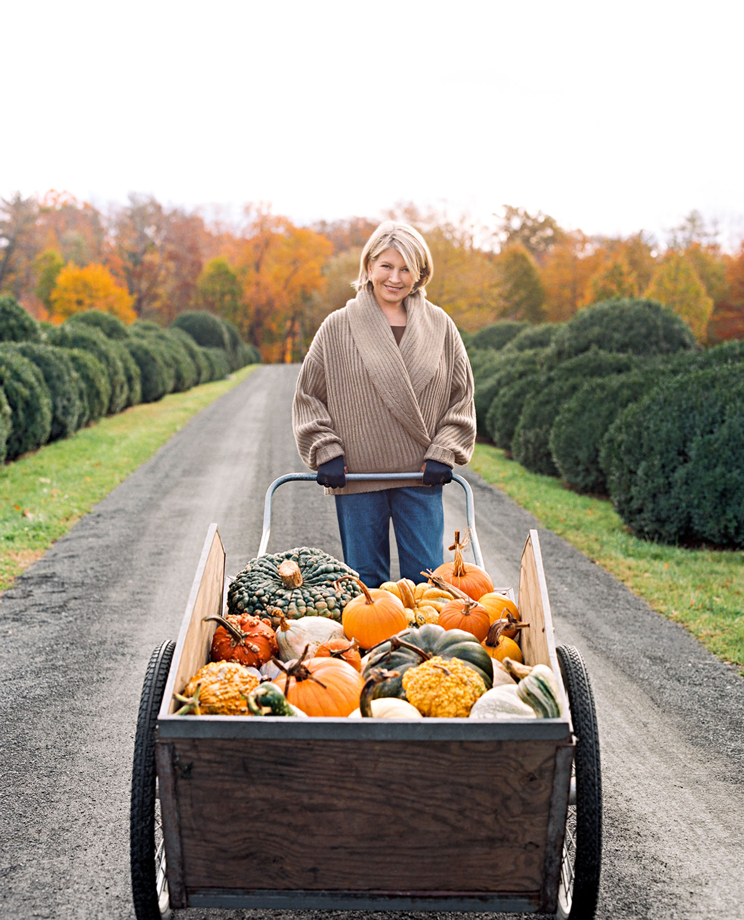 16 of Our Best Fall Harvest Decorating Ideas for Your Home