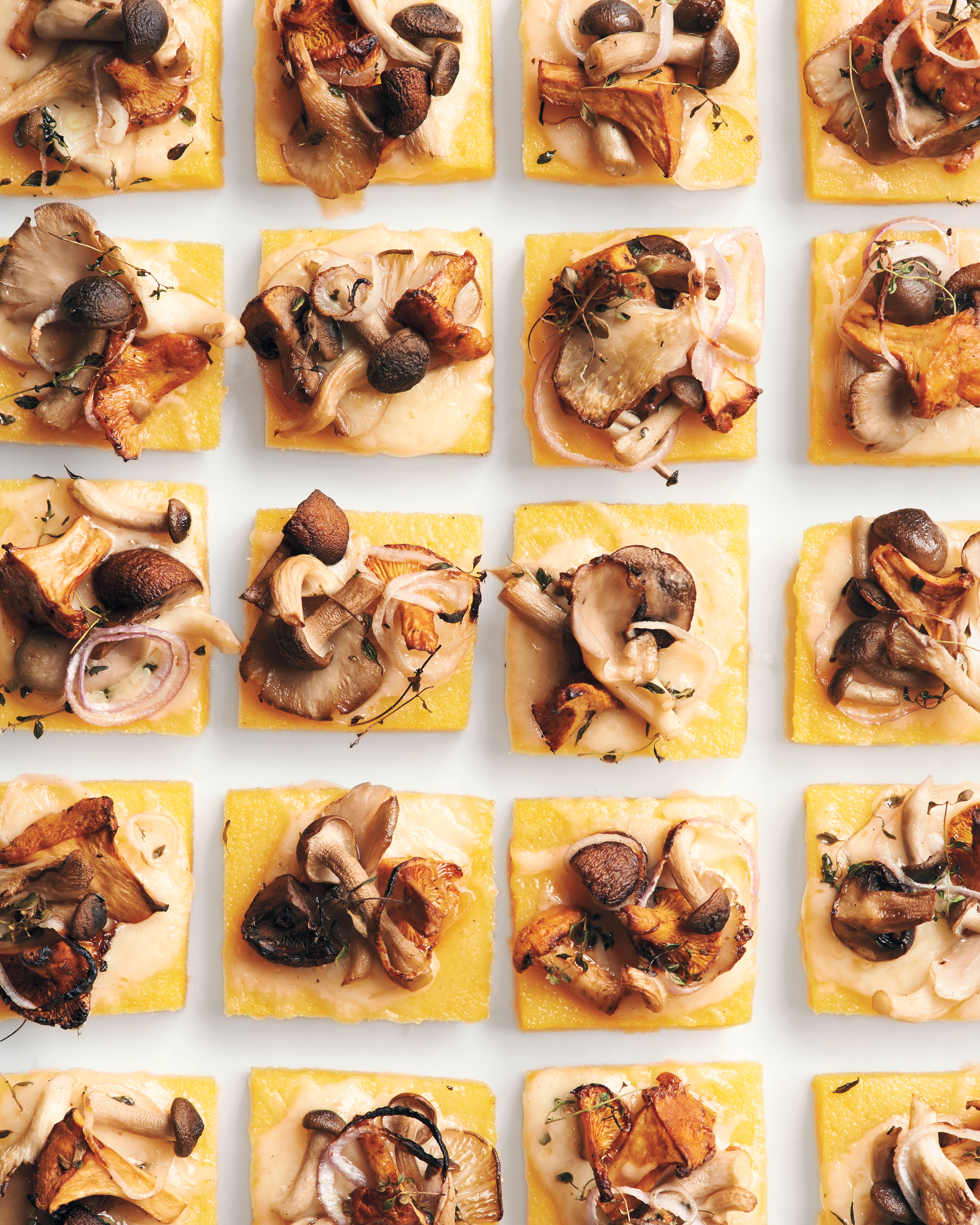 Polenta Squares with Wild Mushrooms and Fontina
